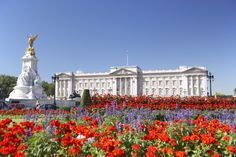 Buckingham Palace | Tours and Tickets