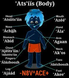 Native American Images, Native American Wisdom, Native American Regalia, Navajo Words, Navajo Language, Navajo Culture, Indian Symbols, Navajo Print, Pokemon
