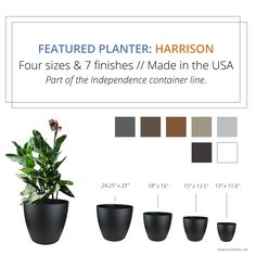 NewPro Containers' HARRISON planter comes in four sizes and 7 finishes. Wholesale pricing.