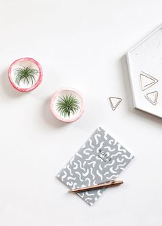 Mini DIY Plant Pots