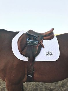 If I ever do ride a horse, you better believe there will be monograms involved.