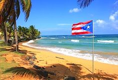 SonoPath is heading to sunny Puerto Rico for ! REGISTER TODAY! Be there for the most intensive practical clinical sonography seminar available anywhere- tailored to your needs. 3/4 day format over 4 days with free time after 3:30 pm each day… Because there is life after veterinary medicine and better learning after a dose of life. http://www.sonopath.com/events/presentations-2015/save-date-sdep-site-ultrasound-lab-puerto-rico