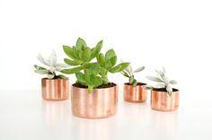 Poppytalk: DIY Mini Copper Planters... Copper cap fittings from the hardware store.
