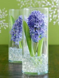 Time permitting grow tulips, paperwhites, daffodils, or your favorite bulb flower. Either cut or dig up bulb, clean off dirt and place in tall vase available at dollar store with addition of glass rocks for centerpiece. Bulb Flowers, Fresh Flowers, Beautiful Flowers, Exotic Flowers, Purple Flowers, Beautiful Pictures, Floral Centerpieces, Wedding Centerpieces, Floral Arrangements