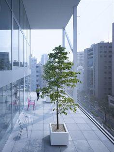 Fifth floor terrace. Photo: Forward Stroke Inc. (arcspace.com)