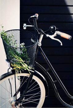love this black vintage bike with bicycle basket x.  I need one for my bike for shopping downtown...wish we had a grocery store