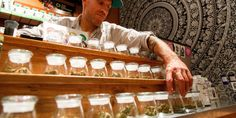 More Than Just Revenue: The Social Capital Benefits of Legal Cannabis