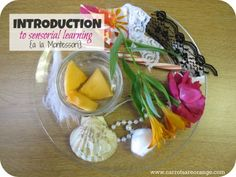 A brief introduction to Sensory Activities a la Montessori. This post includes a simple introductory activity for adults and children to get the senses and the mind flowing. Enjoy!