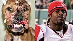 Petition · Demand that the Pittsburgh Steelers not sign Michael Vick · Change.org