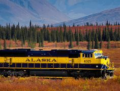 A great Alaska vacation doesn't need a lot of frills. Catch the Alaska Railroad to Denali National Park and Talkeetna on this iconic Alaska train trip. Alaska Train, Alaska Railroad, Vacation Packages, Train Travel, Summer Travel, Trip Planning, National Parks, Adventure, Travel Ideas