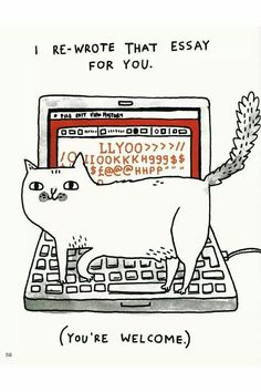 My cat started to do this today!! D: