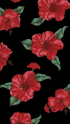 Most recent Totally Free Hibiscus fondos Suggestions Hibiscus plants are tropical beauties that offers a very beautiful look for your garden. These are d fondos Free Hibiscus Suggestions Totally 687784174328348436 Flor Iphone Wallpaper, Wallpaper Iphone Disney, New Wallpaper, Wallpaper Backgrounds, Wallpaper Plants, Phone Backgrounds, Ios Wallpapers, Pretty Wallpapers, Hibiscus Drawing