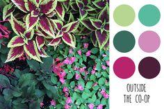 Outside The Co-op color palette. Photo © Jane Kathryn Kolles