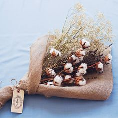 Bouquet / Dried Florals- cotton stalks, baby's breath and lavender