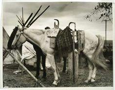 Nez Perce, era 1925
