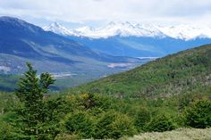 Tierra del Fuego national park.  I want to go back so badly!!