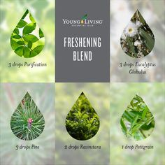 A fresh blend of essential oils for the diffuser.
