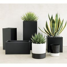 """<span class=""""copyHeader"""">urban landscape.</span> Charcoal planter squares up sleek and modern. Protected for indoor and outdoor settings, matte-finished galvanized steel plays up refined industrial to dramatic effect.<br /><br /><NEWTAG/><ul><li>Powdercoated galvanized steel</li><li>Drainage holes</li><li>Wipe with a soft dry or slightly damp cloth</li><li>Plastic liner recommended for indoor use</li><li>Made in Vietnam</li></ul><br />"""