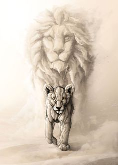 Kopf Tattoo, Lion Tattoo Sleeves, Lion Sketch, Lion Head Tattoos, Lion Family, Lion Poster, Wild Lion, Nature Posters, Lion Art