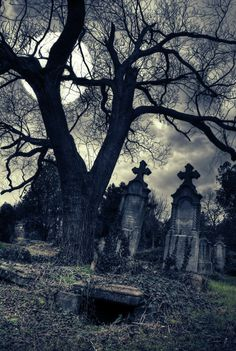 Gothic Cemetery By Moonlight