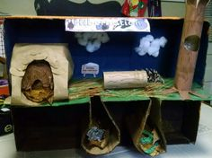My daughter's hibernation project for school. Raccoon in log, squirrel in tree, bear in cave, and rabbit and snake in burrows.