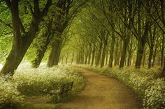 Netherlands....love the bench, set so you can enjoy the view of  nature....not people.