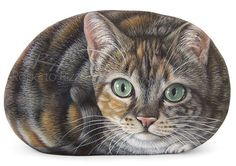This new artworkwas commissioned by Suzi, from UK. She choosed a 6 inches sized rock to portray her beautiful cat Ellie. What do you think about the result? Let me know your opinion with a comment! Are you interested in a pet portrait?Visit www.robertorizzoart.netfor further info!    #paintedrocks #paintedstone #rockart #rockpainting #arts #art #fineart #cats #catportrait #petportrait #petportraits #catlike #animals #painted #commissioned #painting #handmade #animalart #pets