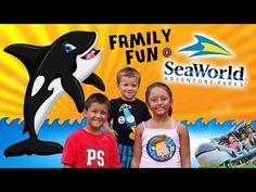 ▶ Skylander Boy & Girl go to SEA WORLD!! Family Fun! (Orlando, FL 2014) - YouTube
