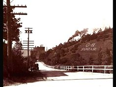 a look back in time: driving by the fields towards our refinery in Crockett, CA
