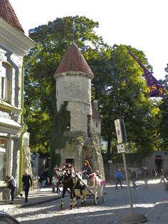 Tallin, Estonia.  No wonder so many people still visit it today!