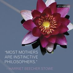 Harriet Beecher Stowe Harriet Beecher Stowe, Thought Provoking, Awakening, Meditation, Composers, Words, Daughters, Authors, Yup