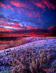 """Sunrise Frost"" by Phil Koch. I love sunrises & sunsets anyway, but this one takes my breath away."