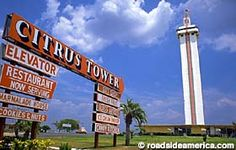 Although it is still there, the citrus tower is now surrounded by shopping centers instead of orange groves