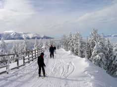 Poiana Brasov is the most attractive ski resort in Romania and an important tourist center in the Prahova Valley. At about 150 Km from capital city Romania Facts, Brasov Romania, Tourist Center, Ski Touring, Hiking Tours, Best Resorts, Cross Country Skiing, Bucharest, Wonderful Places