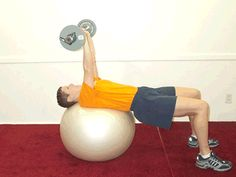 Today's Exercise: Barbell Triceps Extensions on Ball