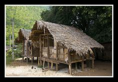Tribe house