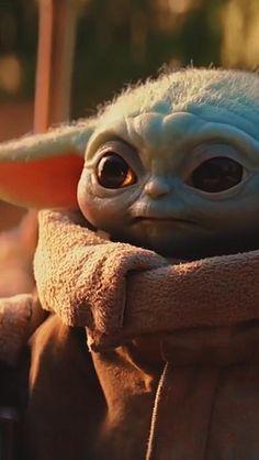 Star Wars Film, Star Wars Rebels, Star Wars Art, Star Wars Family Tree, Yoda Pictures, Original Star Wars Movie, Star Trek Poster, Star Wars Figurines, Star Wars Tattoo