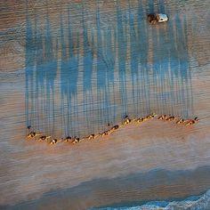 exercicedestyle:  Western Australia