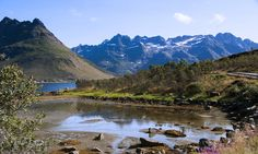 https://flic.kr/p/v47ciH | summer makes up for all the hardships of winter | landscape around Austnesfjord on the Lofoten islands, Northern Norway. The summers are so beautiful that the mind has trouble getting to grips with it while the senses are going crazy ;)