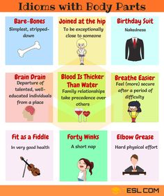 Commonly Used Body Parts Idioms in English