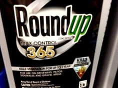 Monsanto Seeks Retraction for Report Linking Herbicide to Cancer