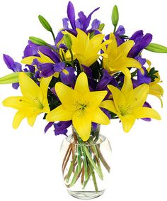 Iris Lily-Our tall glass vase of yellow Asiatic Lilies and purple Iris are vivid and as bold as an Alaskan summer! Purple Flower Bouquet, Purple Wedding Bouquets, Lily Bouquet, Yellow Flowers, Pretty Flowers, Silk Flowers, Wedding Flowers, Mardi Gras, Yellow Flower Arrangements