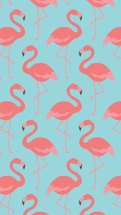 [ Flamingo Pattern Tap See More Beautiful Iphone Wallpapers Nature Colorful Texture Minimalist Wallpaper ] - Best Free Home Design Idea & Inspiration Screen Wallpaper, Cool Wallpaper, Pattern Wallpaper, Wallpaper Backgrounds, Iphone 7 Wallpapers, Cute Wallpapers, Wallpaper Fofos, Flamingo Wallpaper, Whatsapp Wallpaper