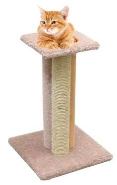 USA Made Wood Cat Scratching Post 24 inch Triple Cat Scratcher Furniture Rope, Beige Carpet * Special  product just for you. See it now!(This is an affiliate link and I receive a commission for the sales) : Cat Beds Furniture