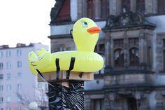 Fakty - Legnica - Jest policyjne dochodzenie ws. gumowej kaczki - wiadomości z Legnicy i o Legnicy