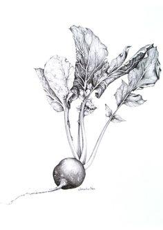 e0ceae71e1859cee3c21f281fc29c82d.jpg 736×1,040 pixels