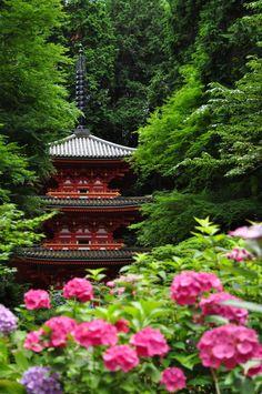 Gansen-ji Temple, Kyoto, Japan