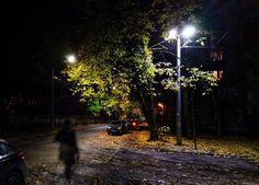 #autumnight