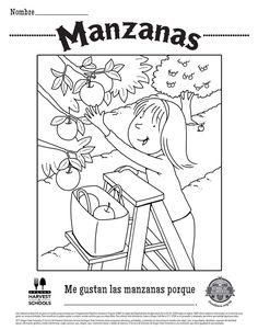 Free Printable Food Hero Childrens Coloring Sheet on Brussels