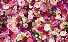 Freshen Up Your Desktop With These Pretty Wallpapers   #CleanYourVirtualDesktopDay -Beau-coup Blog
